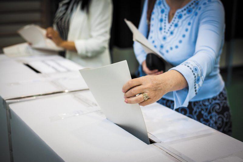 CZAS PIASTOWA_wybory do parlamentu europejskiego